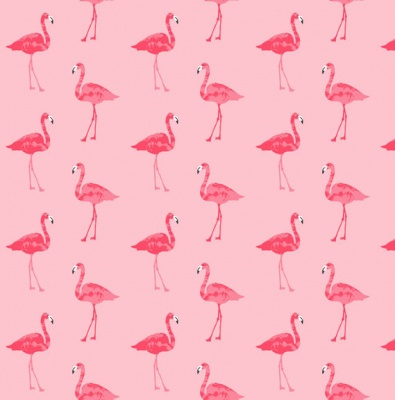 Fruity Flamingo Pink Cotton