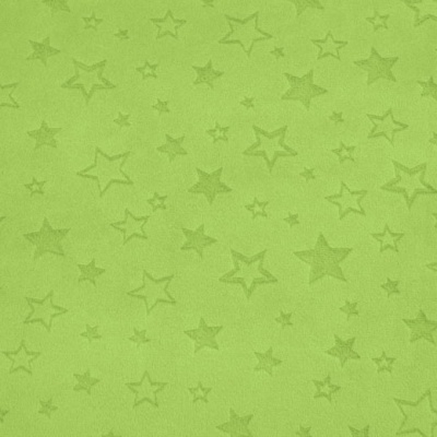 Star Embossed Lime Plush