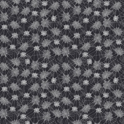 Haunted Web Black Cotton
