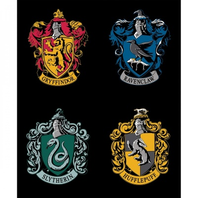 HP Black House Crests Panel