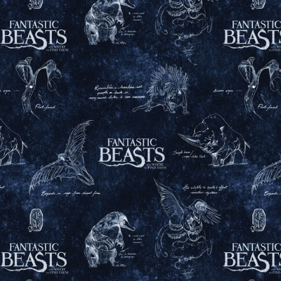 Navy Logo & Creatures Fantastic Beasts Cotton