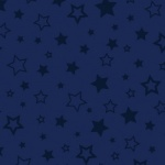 Star Embossed Midnight Plush