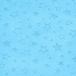 Star Embossed Turquoise Plush