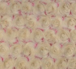 Frosted Rose Coral Beige Plush